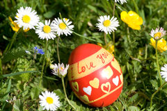 Red easter egg lying in springflower covered meadow Stock Photos