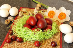 Red easter eggs with flowers. Stock Images