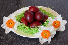 Red easter eggs with flowers. Royalty Free Stock Image