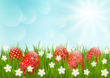 Red Easter eggs on green grass Stock Images