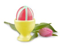 Red Easter eggs with pink tulip, isolated Royalty Free Stock Images