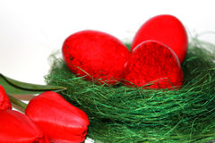 Red easter eggs and red tulips Royalty Free Stock Photography