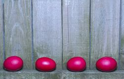 Red Easter eggs on rustic wooden fence background Stock Images