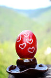 Red easter painted egg Royalty Free Stock Photos