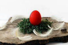 Red Egg for Easter Royalty Free Stock Photography