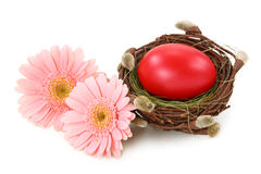 Red egg in nest Royalty Free Stock Photos