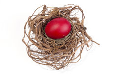 Red egg in nest Stock Photos