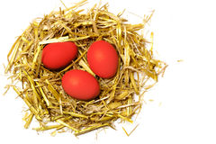 Red eggs in a easter nest of straw isolated on white background Royalty Free Stock Photography