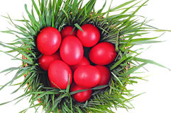 Red eggs on green grass, wooden basket; Easter tradition Stock Photos