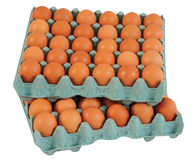 Egg carton. Royalty Free Stock Image