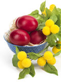 Red eggs in a porcelain bowl Royalty Free Stock Image