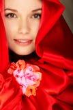 Red elegance Royalty Free Stock Image