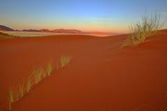 Red Elim Sand Dunes Stock Photo