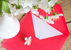 Red envelope and white vase of cherry blossom on wooden backgrou Royalty Free Stock Photos