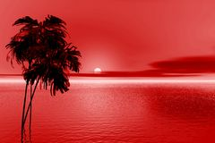 Red evening Stock Photo