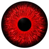 Red eye Royalty Free Stock Photography