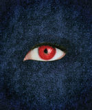 Red eye over blue texture Stock Image