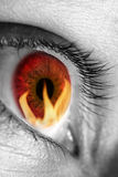 Red eye refecting fire stock image