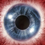 Red Eyeball 3D Illustration Royalty Free Stock Images