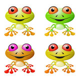 Red-eyed Tree Frog Set Royalty Free Stock Image