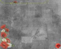 red för bakgrundsblommavallmo Arkivfoton