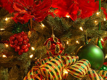 red för julguldgreen Arkivfoto