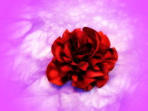 Red fabric flower-brooch Royalty Free Stock Photos