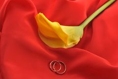 Red  fabric and  yellow flower Stock Image