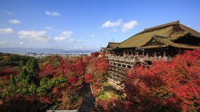Red fall leaves autumn at Kiyomizu-dera temple in Kyoto, Japan. Time lapse 4K of red fall leaves autumn at Kiyomizu-dera temple in Kyoto, Japan stock video