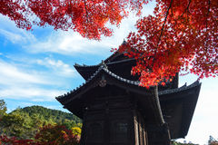 Red fall maple leaves glow with color in front of an ancient Japanese temple during autumn Royalty Free Stock Photography