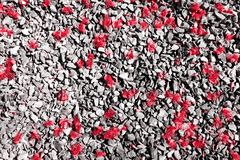 Red fall pollen scattered on the gravel and stone blocks. Selective focus. Pollen red fall spread on the area is gravel and floor stone blocks. Selective focus royalty free stock photos