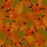 Red fallen leaves seamless pattern. Vector illustration of herbarium Stock Image