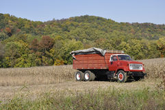 Red farm truck Royalty Free Stock Photography