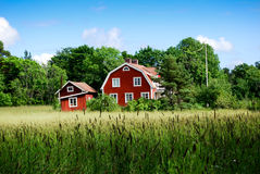 Red farmhouse. And barn with tall grass field in foreground Royalty Free Stock Images