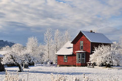 Red farmhouse with fresh winter snow and frost Royalty Free Stock Image