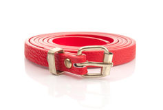 Red fashion belt Stock Photography