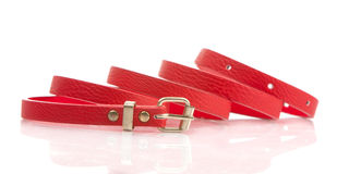 Red fashion belt Stock Photos