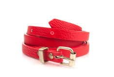 Red fashion belt Royalty Free Stock Photos