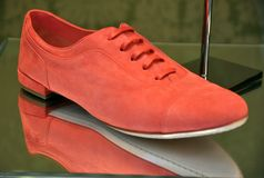 Red fashion shoes Stock Images