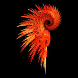 Red feather. Fire red feathers symbol abstract Stock Photos
