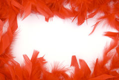 Red feather border Royalty Free Stock Photos