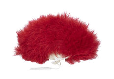 Red Feather fan Stock Image