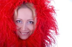 Red feathers Stock Photos