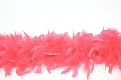 Red feathers isolated. Red feathers lie on the white background stock image