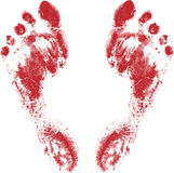 Red feet. Prints isolated on the white background Stock Photography