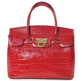 Red female leather bag made of reptile skin / isolated on white Stock Photos