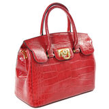Red female leather bag made of reptile skin / isolated on white Stock Images