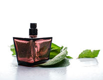 Red female perfume Royalty Free Stock Image