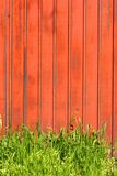Red fence. With plants royalty free stock photo