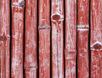 Red fence made of bamboo Stock Image